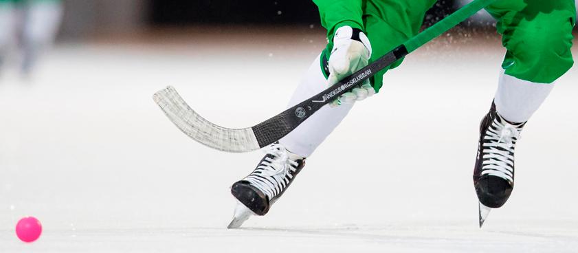Ставки на хоккей с мячом: советы по стратегии и системе — как выигрывать чаще