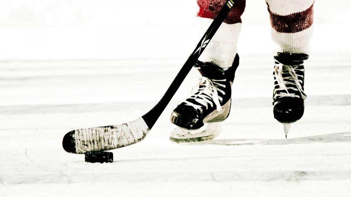 Стратегии ставок на хоккей – самые эффективные системы и стратегии ставок на спортивном портале Bukmekerov.net
